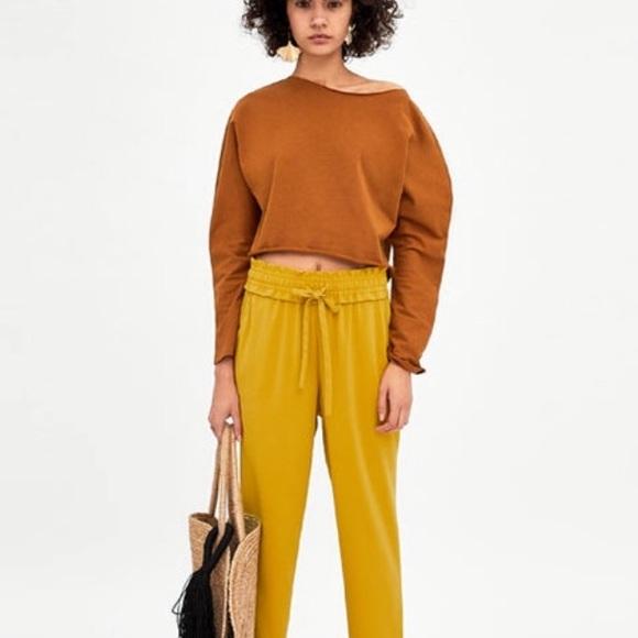 95543b495fe7c NWT Zara Brown long sleeve crop top